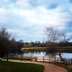 The River Tees at Preston Park
